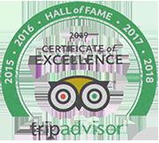 TripAdvisor-achievement-logo